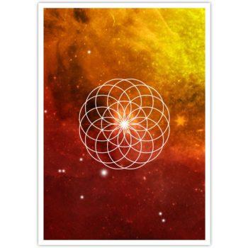 Sunflower postkaart